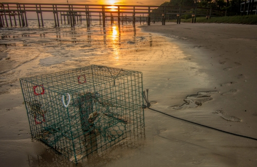 Crab Trap at Dusk_edited-1